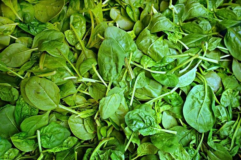 Spinat sollte in Bio-Qualität gekauft werden