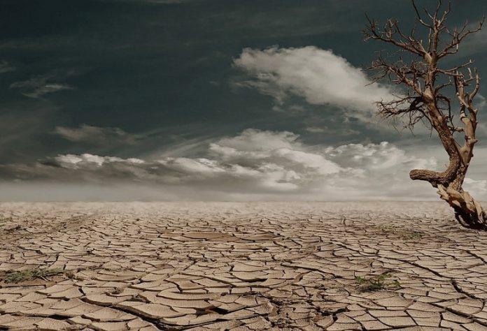 Unser Planet ist nicht genug. Theoretisch bräuchten wir drei Erden.